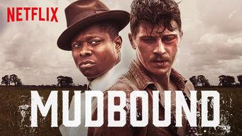Netflix Guides | Flixable